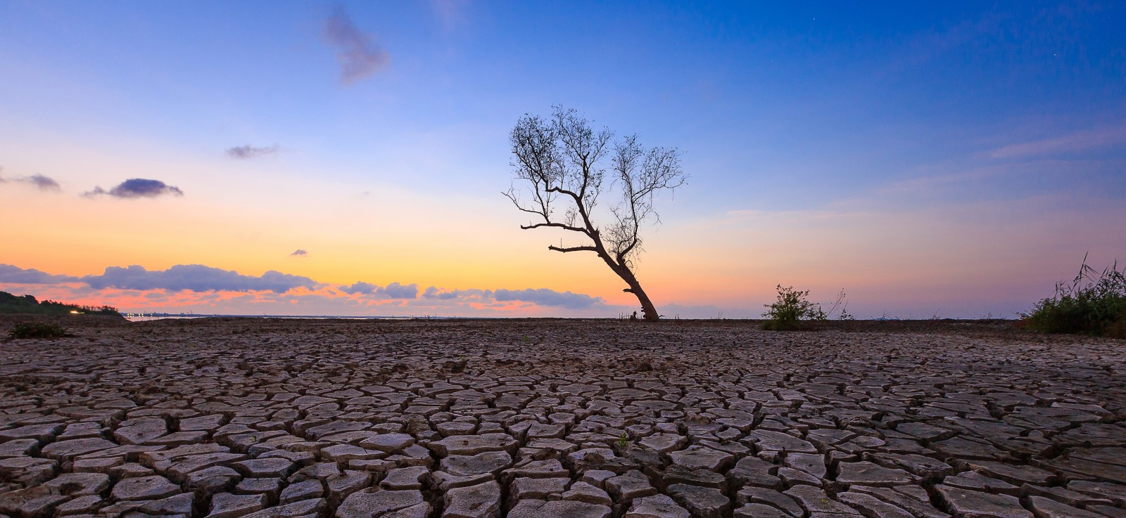 CLIMWAR_cracked earth drought © Chaisit Rattanachusri / Shutterstock