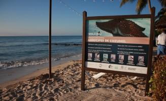 Trabajo en favor de la protección de los arrecifes de coral