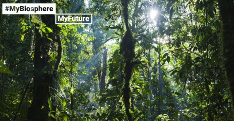 Oxapampa- Asháninka -Yanesha biosphere reserve
